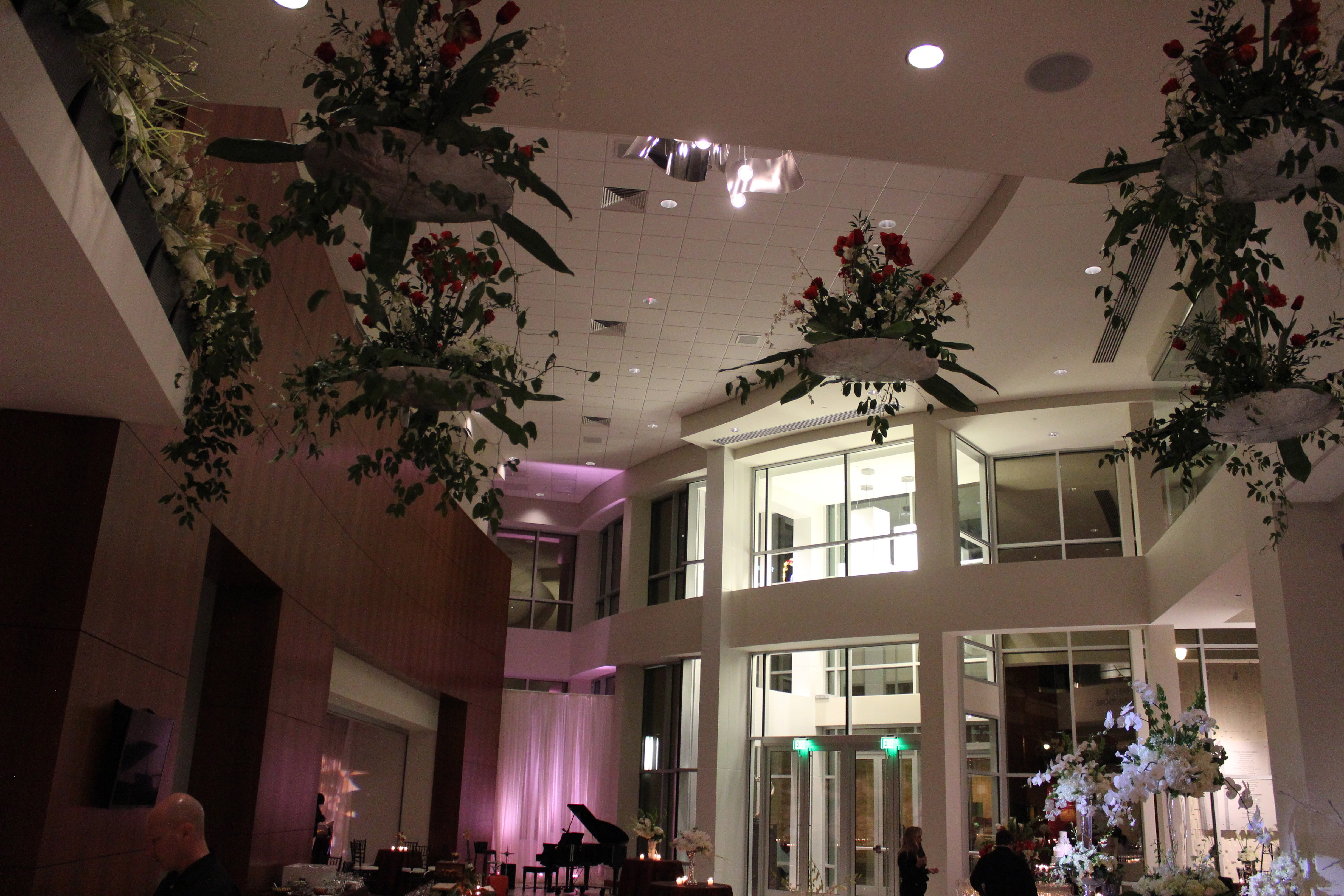 Hanging plants in lobby